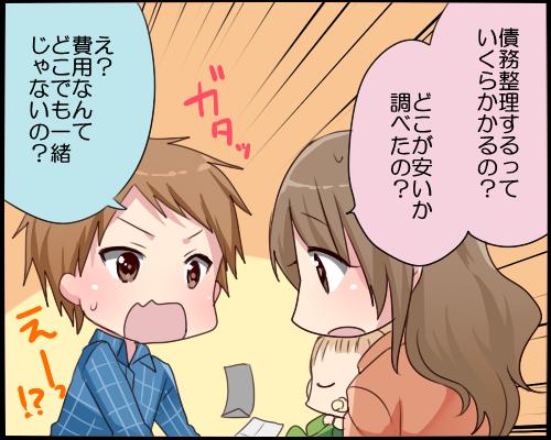 saimuseiri-yasuihiyou